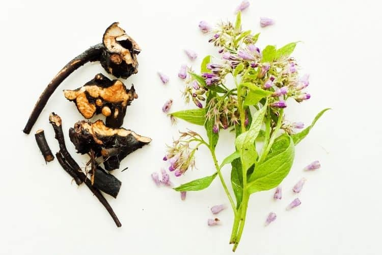 natural ingredients that are good for dry skin - comfrey root and flowers