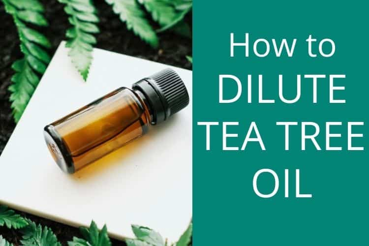 how to dilute tea tree oil for acne